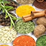 Spices and herbs used in indian cooking